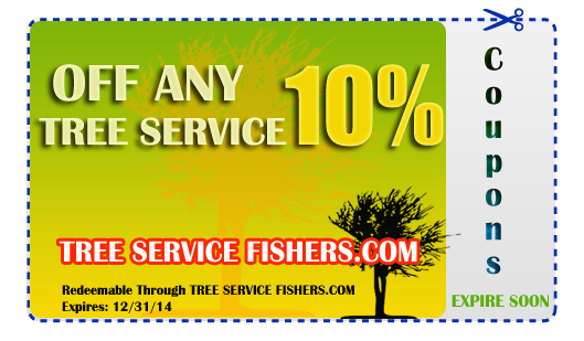 Tree Service Coupon Fishers Indiana 317-537-9770
