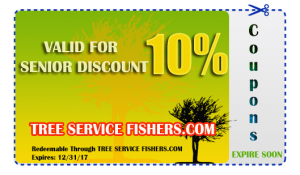 Tree Care Coupon Fishers IN