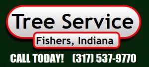 Fishers Tree Service 317-537-9770