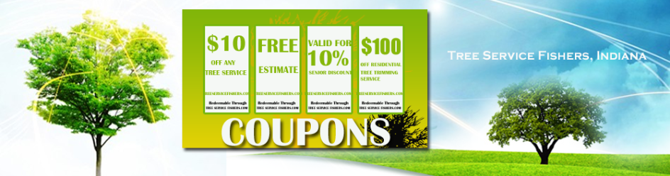 Fishers Tree Service Coupons